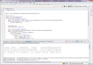 Fragment de cod generat (fara posibilitatea de modificare manuala) Consola aplicatiei server generate, la pornire.